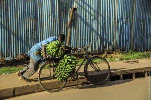 07. Jun, 18.30 Uhr: Reisepostillen – Berichte aus Uganda und Togo